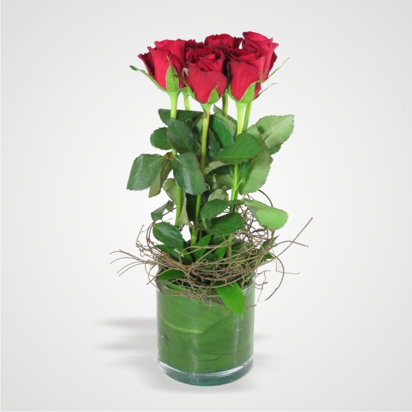 -6-red-roses-in-a-vase-
