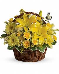 basket-yellow