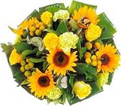 yellow-bunch-
