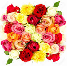 mixed-rose-bunch